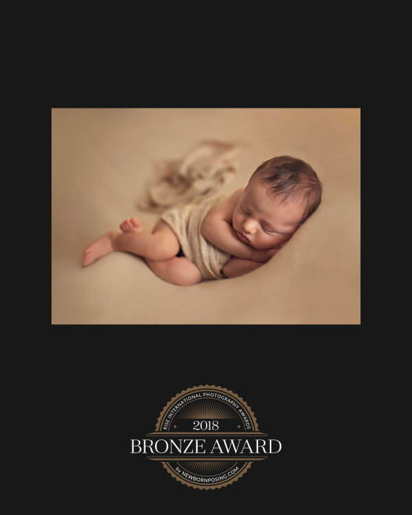 2018 bronze award