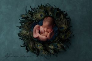 newborn photography digital composition