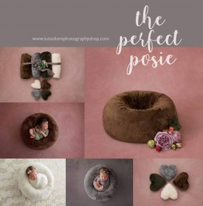 the perfect posie from graceland designs